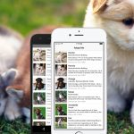 Build a List of Pets for Adoption App with React Native – Part 1